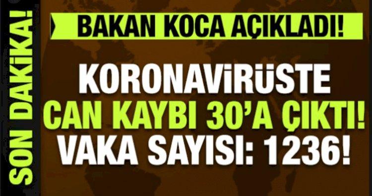 Türkiye'de Korona Vakası 1236 Ölü Sayısı 30 Oldu