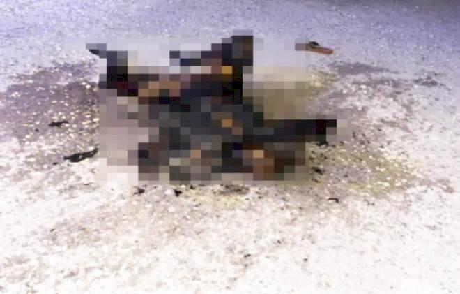 Urfa'da Yanmış Kadın Cesedi Bulundu