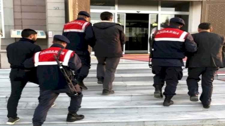 Konya'da Büyükbaş Hayvan Çalan Hırsızlar Urfa'da Yakalandı