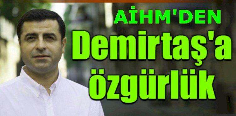 AİHM'den Demirtaş Kararını Açıkladı